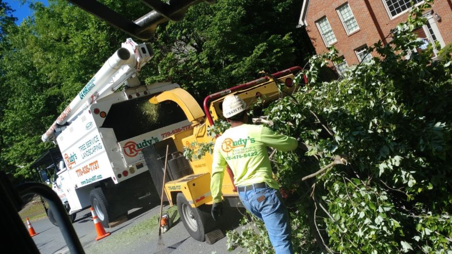 Rudys Tree Service and Landscaping Projects Equipment Professional Crew