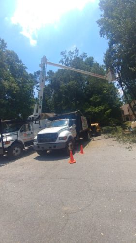 Rudys Tree Service and Landscaping Projects Equipment Professional Team