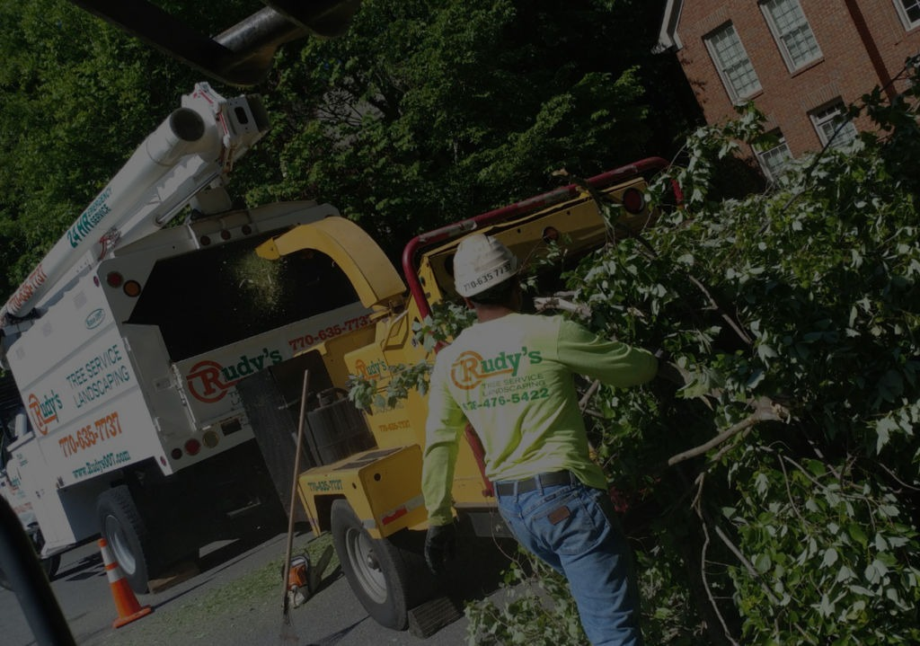 Rudys Tree Services Landscaping in Marietta GA